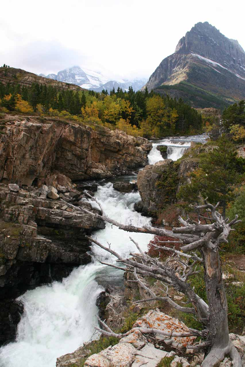 This was the view of Swiftcurrent Falls and Mt Grinnell back in September 2010, which seemed to have a lot more volume than it did in our second visit in August 2010