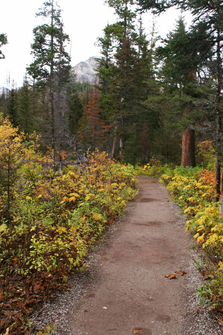 Pretty Autumn colors were starting to come out in the foliage flanking the Running Eagle Falls trail