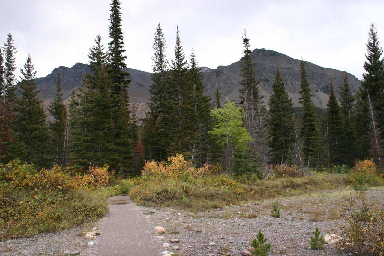 Flat and wide open terrain before we crossed the footbridges over Running Eagle Creek