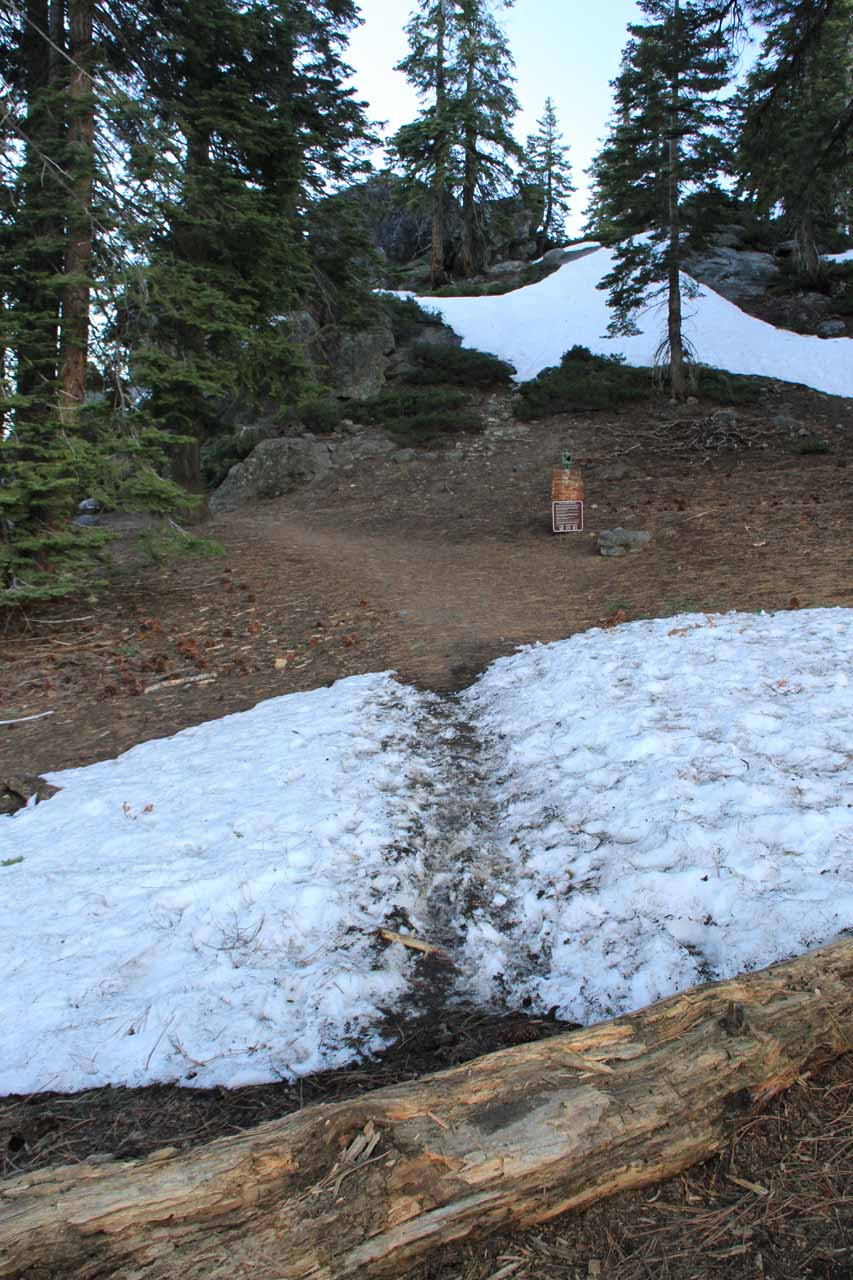 Some residual snow obscuring the path to the Panorama Trail