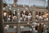 Glasgow_308_08302014 - Inside the Kelvingrove Museum