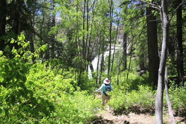 Glen_Alpine_Falls_111_06232016 - Mom pursuing an unmarked path leading us closer to the bottom of the Modjeska Falls