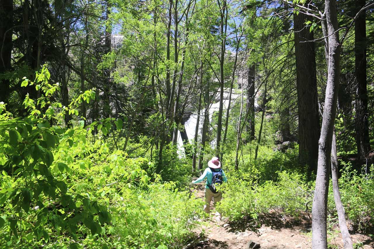 Approaching Modjeska Falls on that informal trail