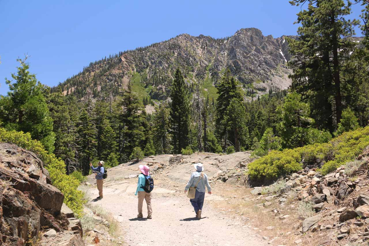 Heading back on the main trail or road to the Lily Lake area