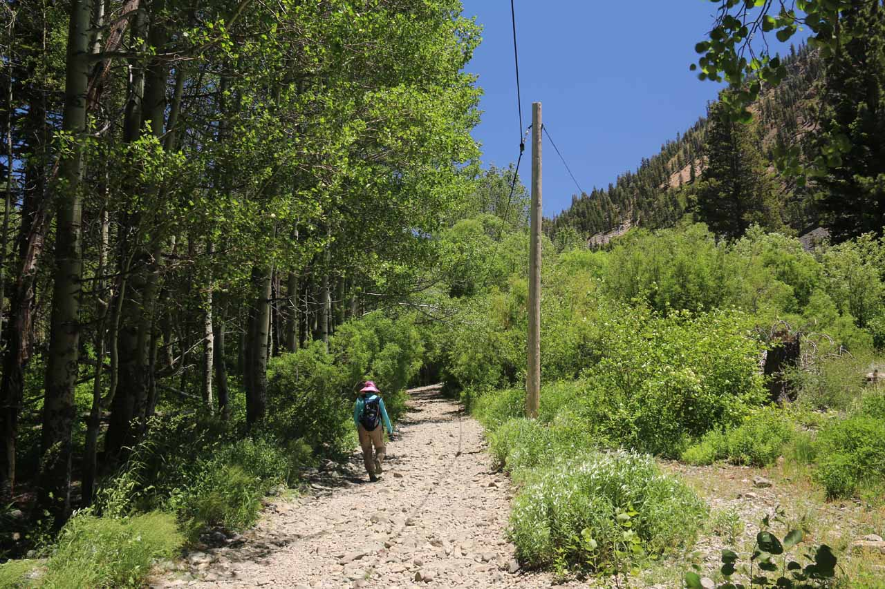 Seeing the power lines along the road kind of made us realize that this trail might have had a dual purpose both now and in the past
