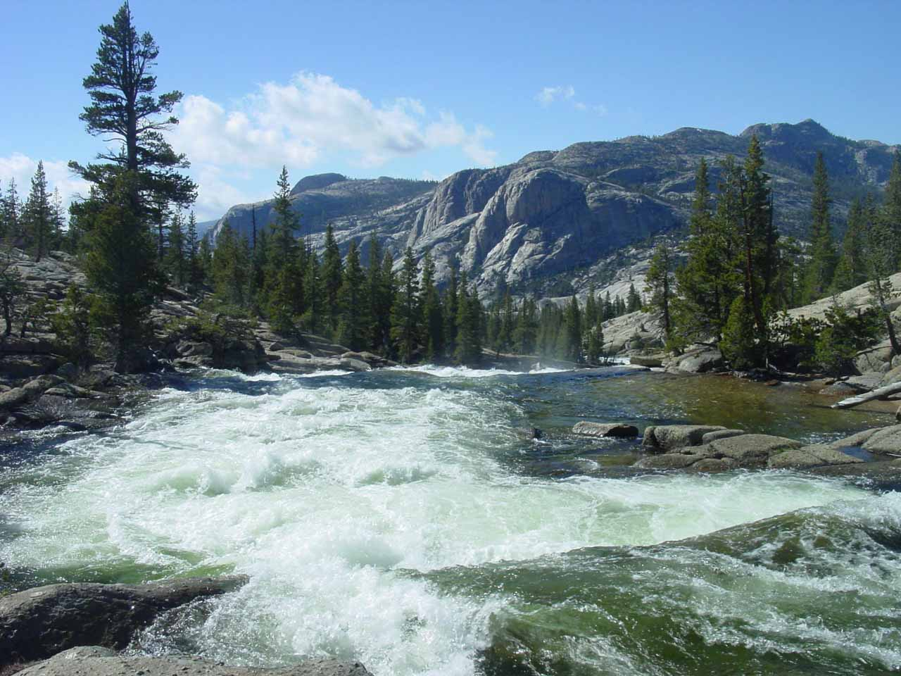 Looking downstream on the Tuolumne River as we crossed it over the footbridge