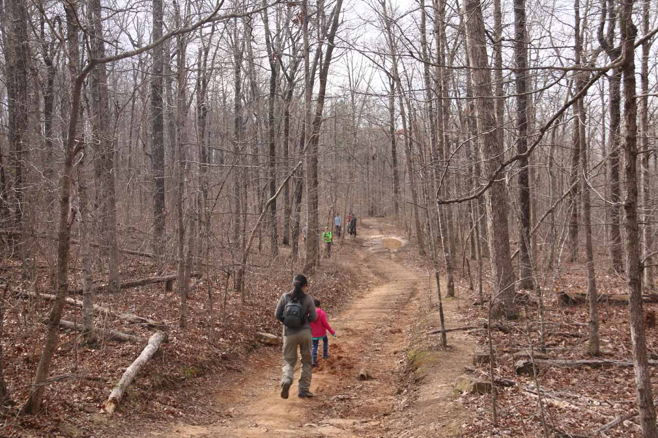 At first, the trail gradually descended along a gentle jeep trail flanked by thin trees