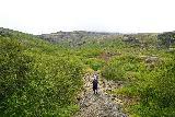 Glymur_027_08052021 - Mom still on the Glymur hike as we were making our way towards Thvottahellir