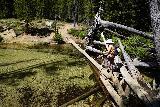 Goat_Falls_and_Lake_hike_468_06172021 - Mom going back across the log jam traverse of Iron Creek