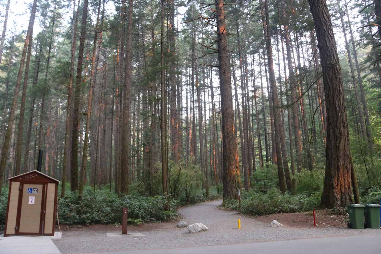 The start of the trail from the campground and outhouse to Goldstream Falls