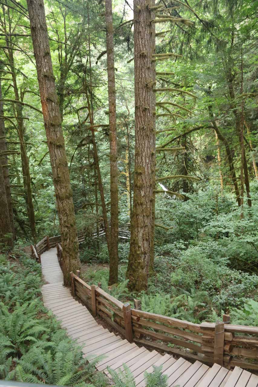 Going down the steps towards the creek and Goldstream Falls