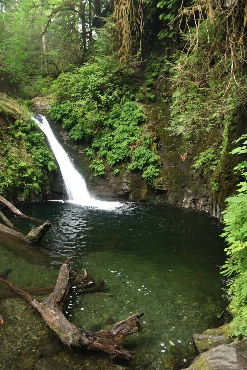 After a little scrambling, I managed to get this more direct look at the Goldstream Falls and its plunge pool