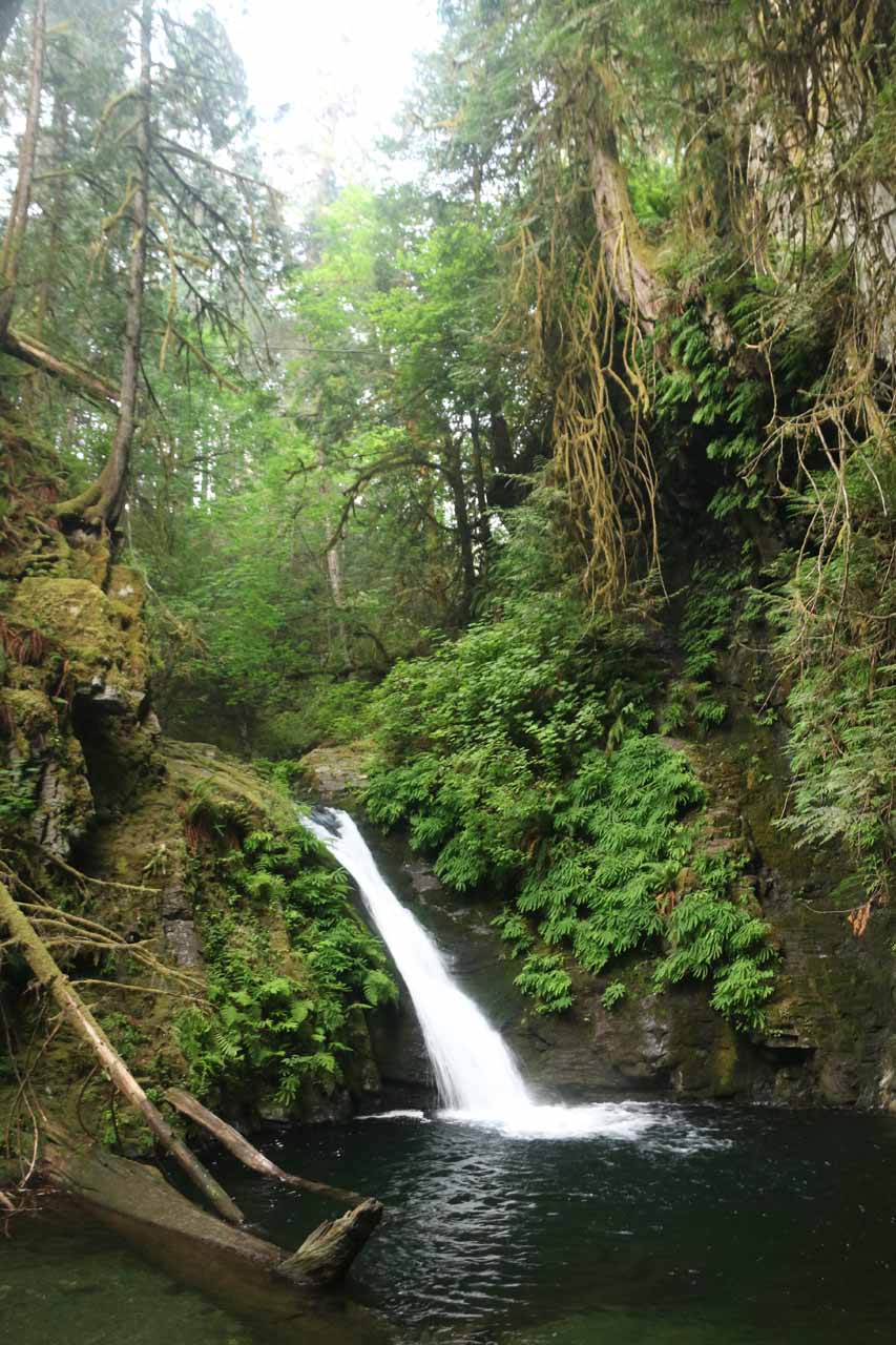 Another contextual look at Goldstream Falls and its surroundings
