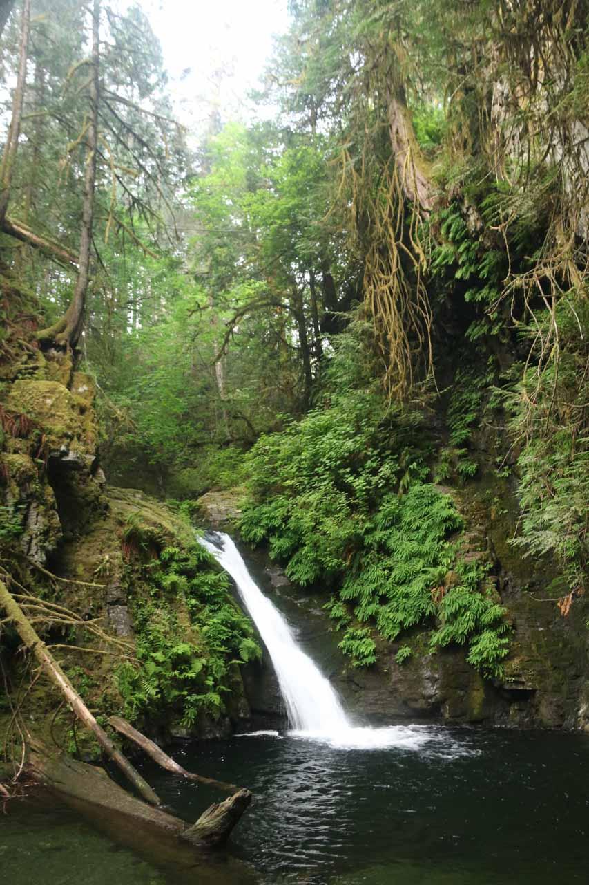 Goldstream Falls