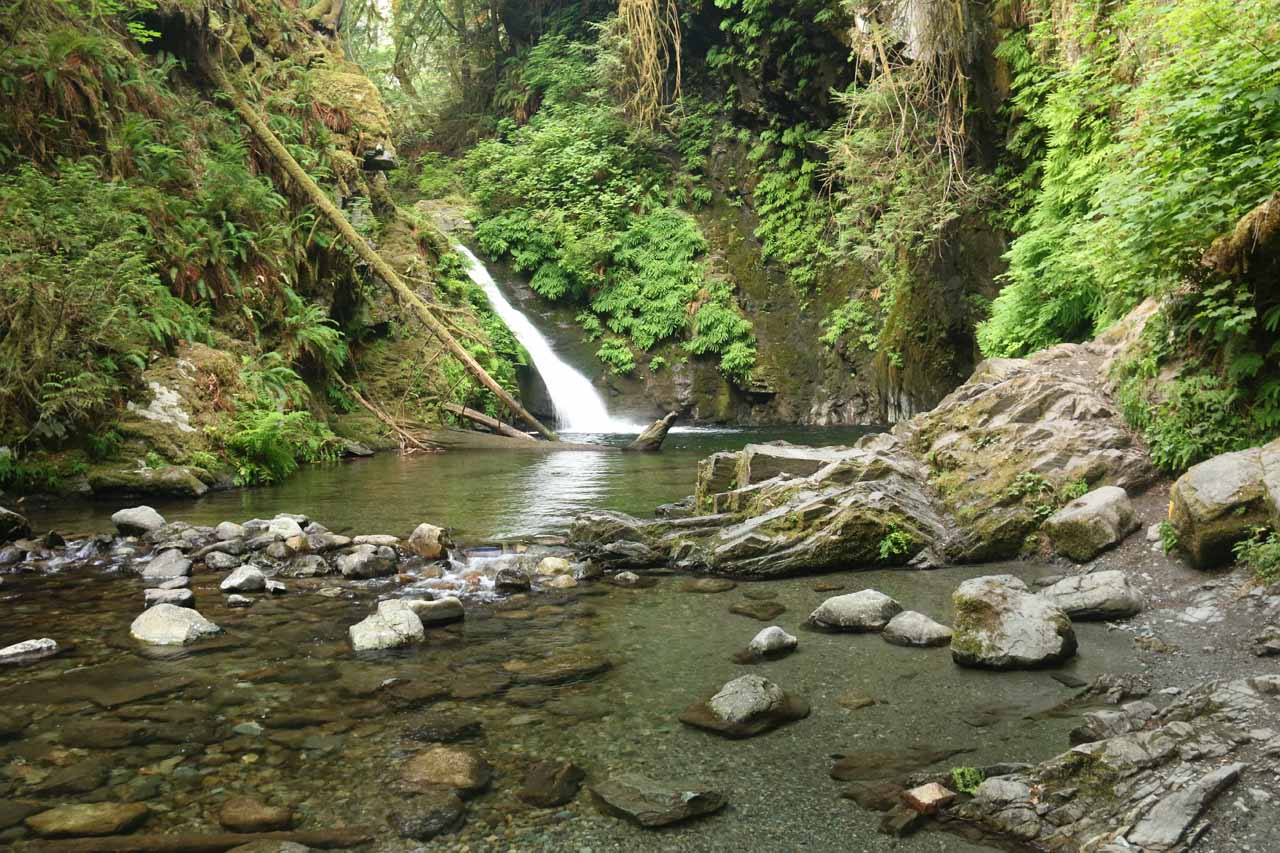 Last look at Goldstream Falls before it was time to go