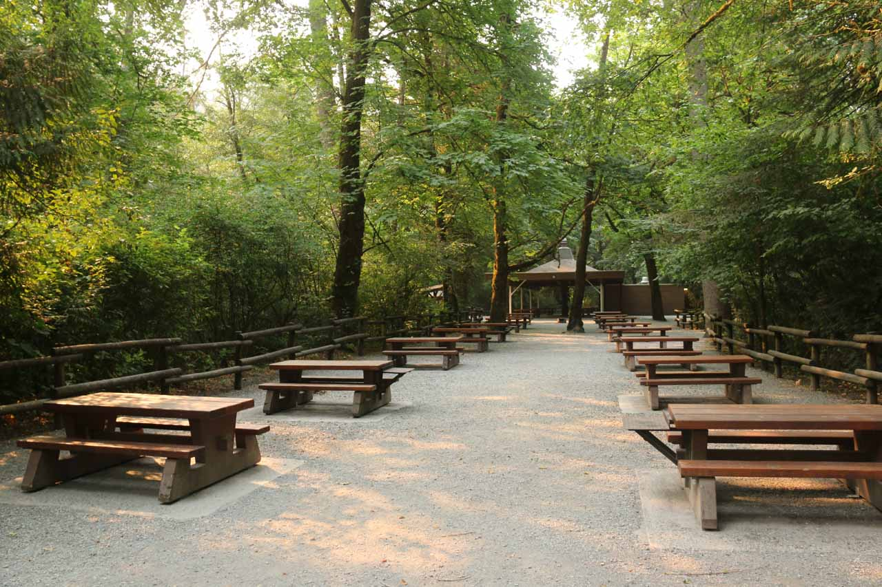 Lots of picnic tables by the parking lot for the Goldstream Provincial Park Visitor Centre