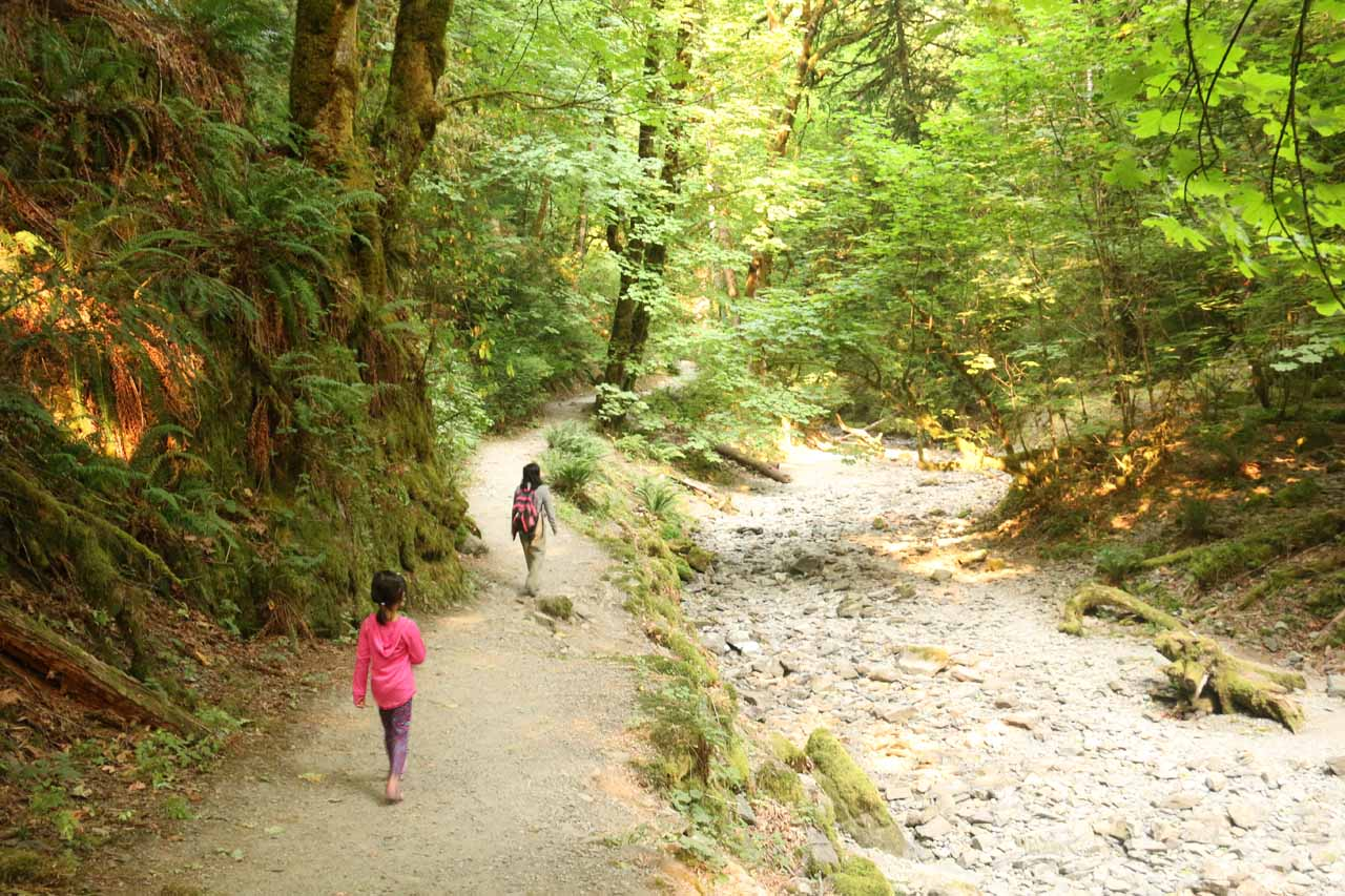 When we emerged from the other side of the tunnel, we opted to walk this easy creekside trail