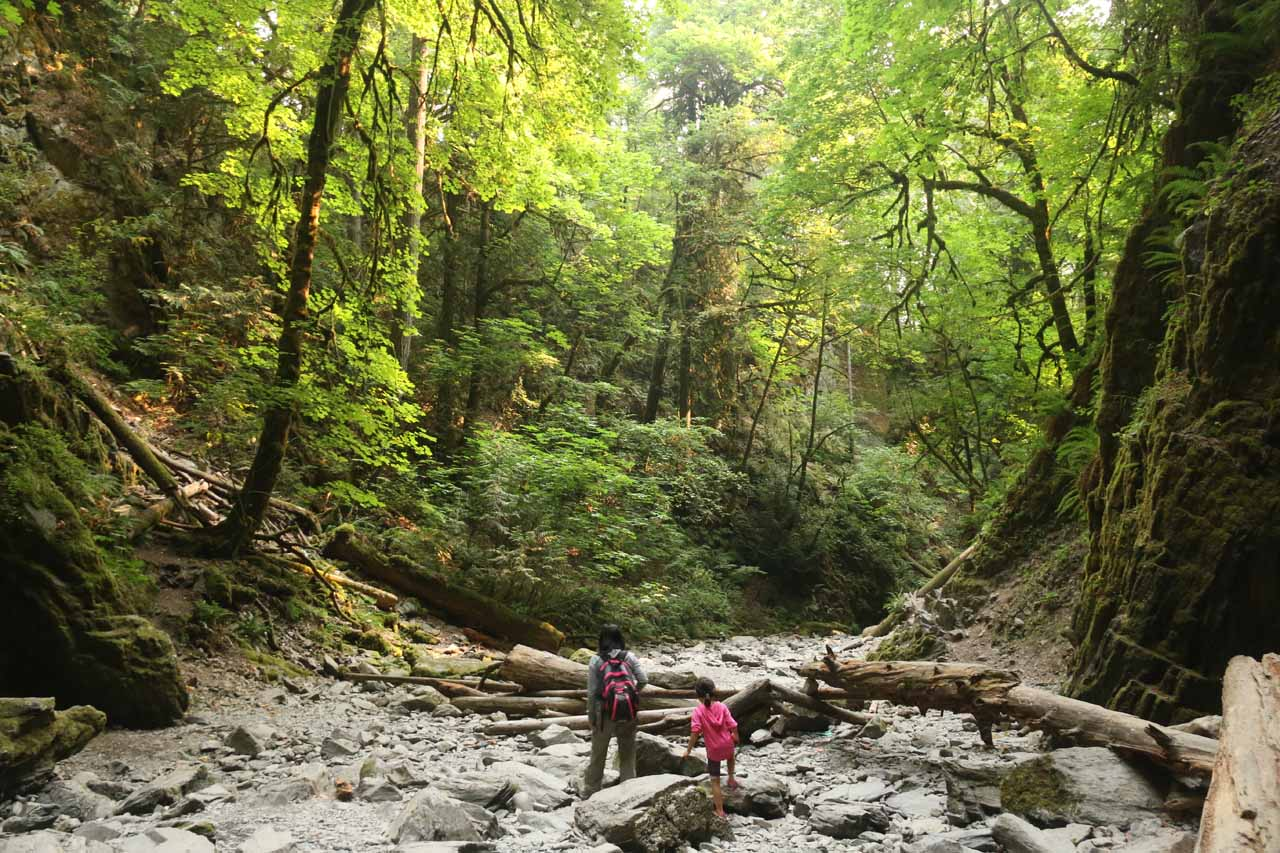 After having our fill of the Goldstream Niagara Falls, we decided to scramble back within the dry creekbed