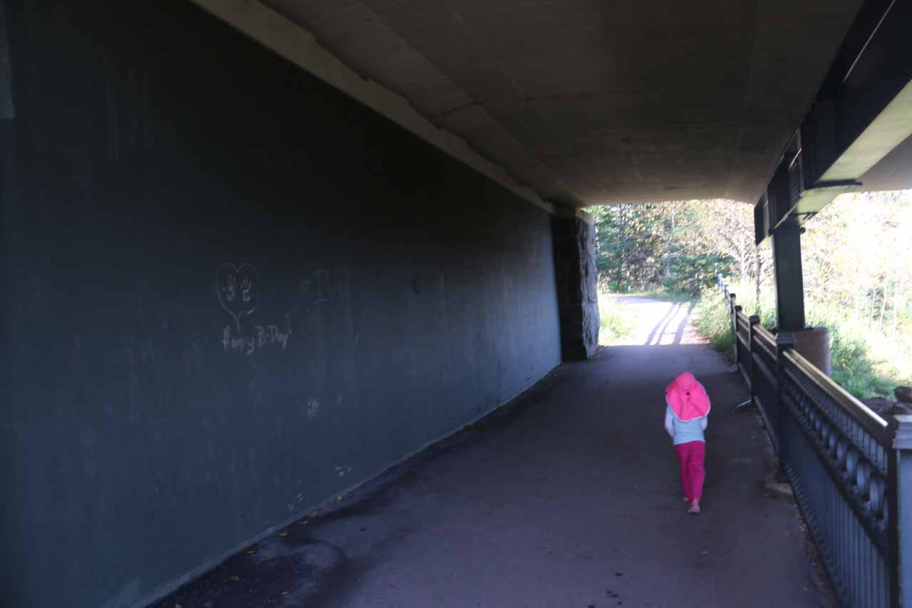 Tahia about to leave the underpass beneath the Hwy 61 road bridge