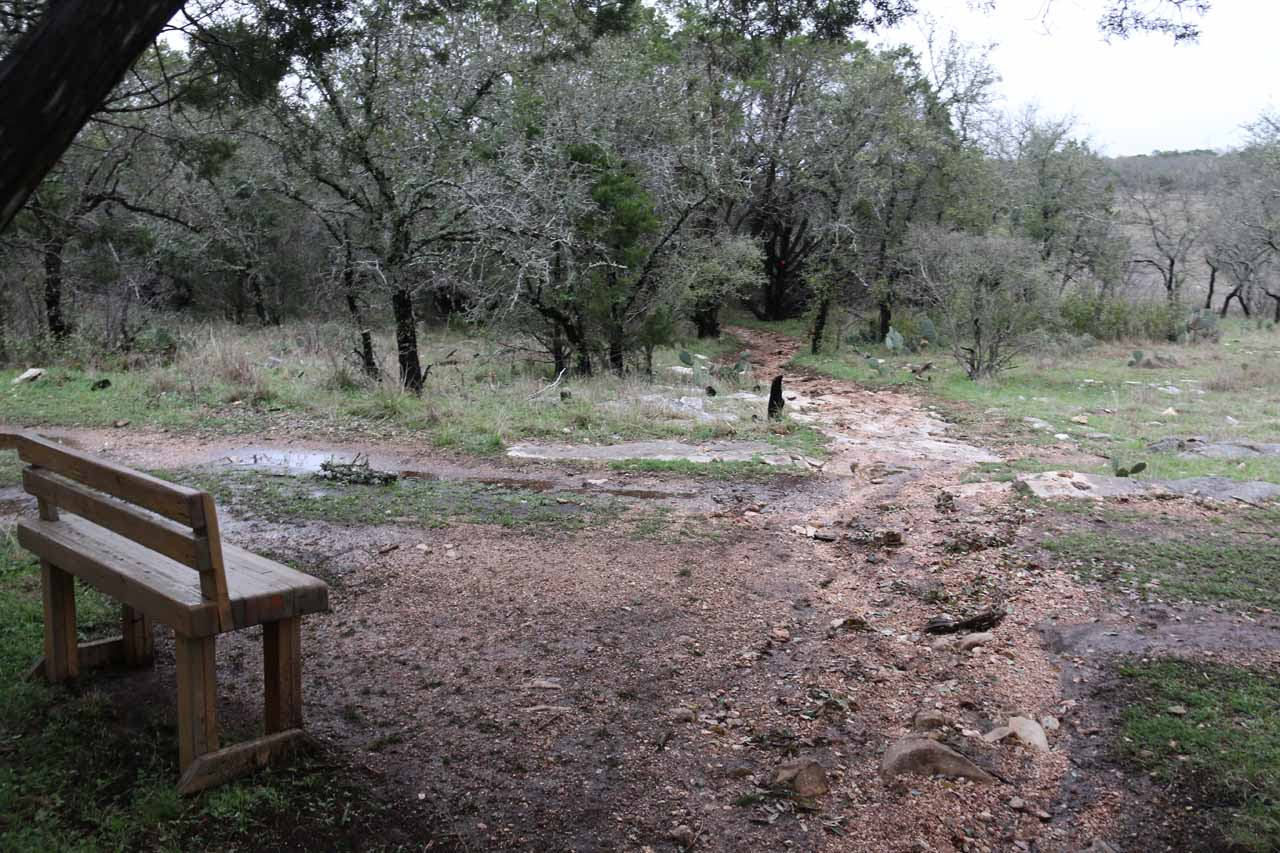 In one particular junction, there was this rest bench, which provided some indication of how well-used and developed the trail was even though the trail was in the wilderness of the Texas Hill Country