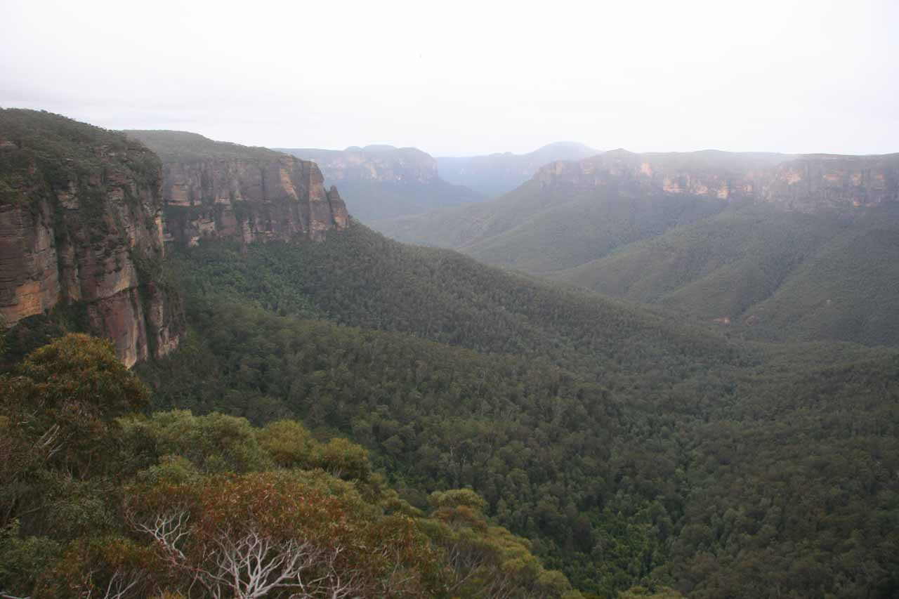 The view from Govett's Leap