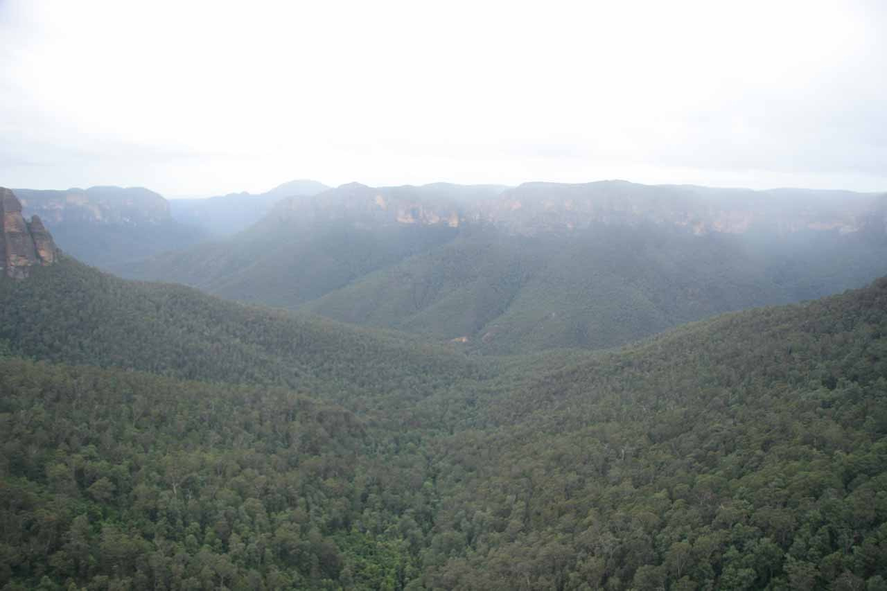 Expansive views from Govett's Leap