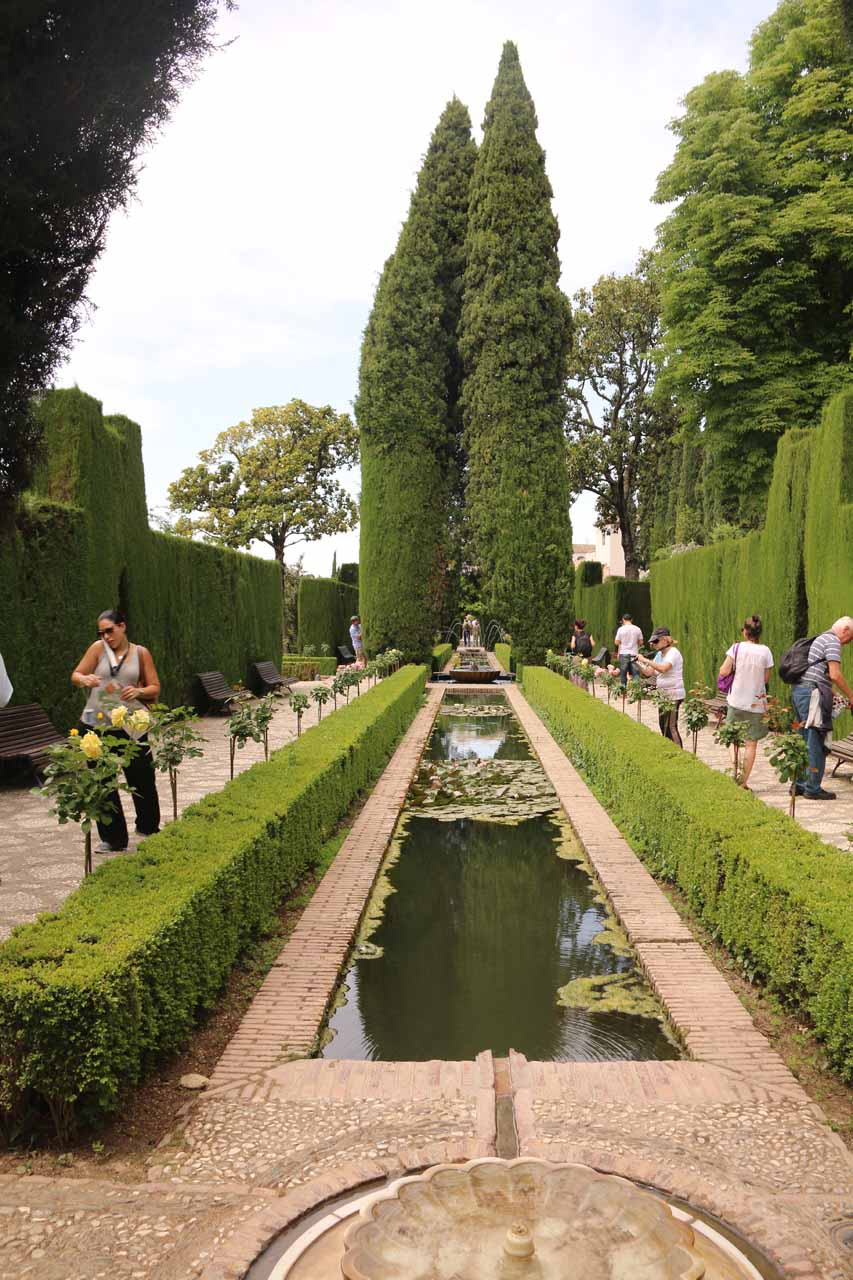 Strolling amongst the elaborate ponds and gardens leading to Generalife