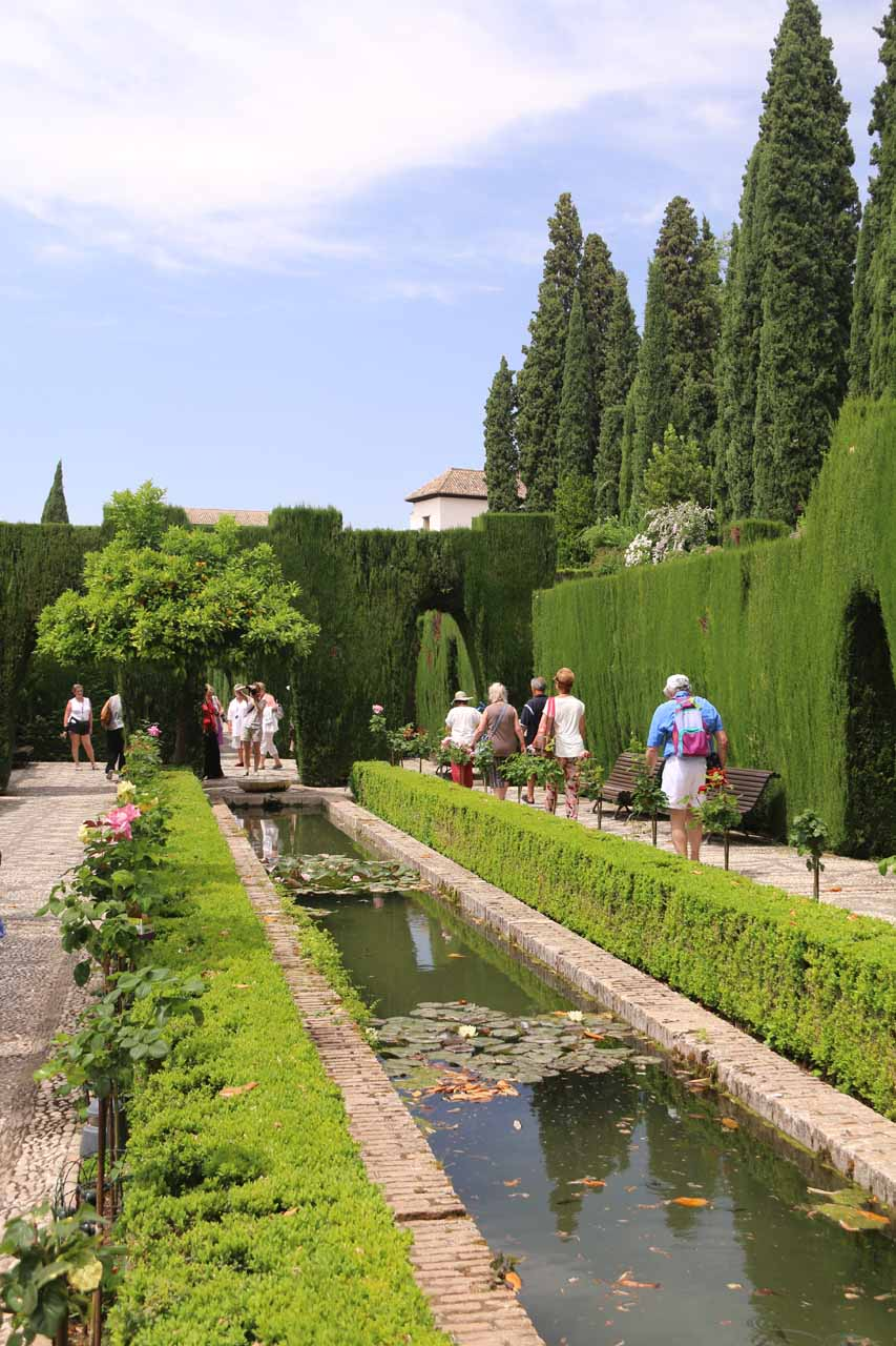 Walking alongside an attractive pond within the Generalife Gardens
