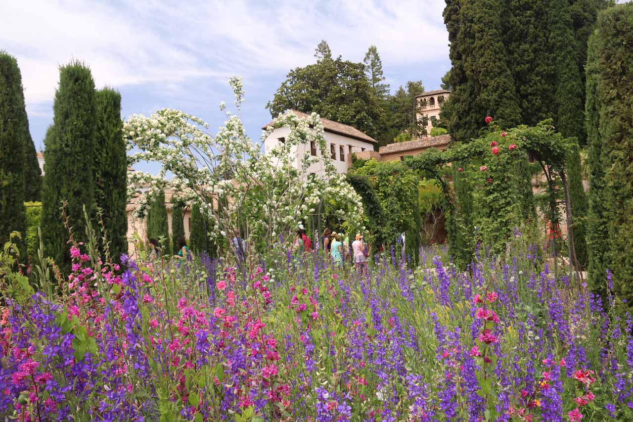 Flowers in bloom in the gardens before getting right to the Palace of the Generalife