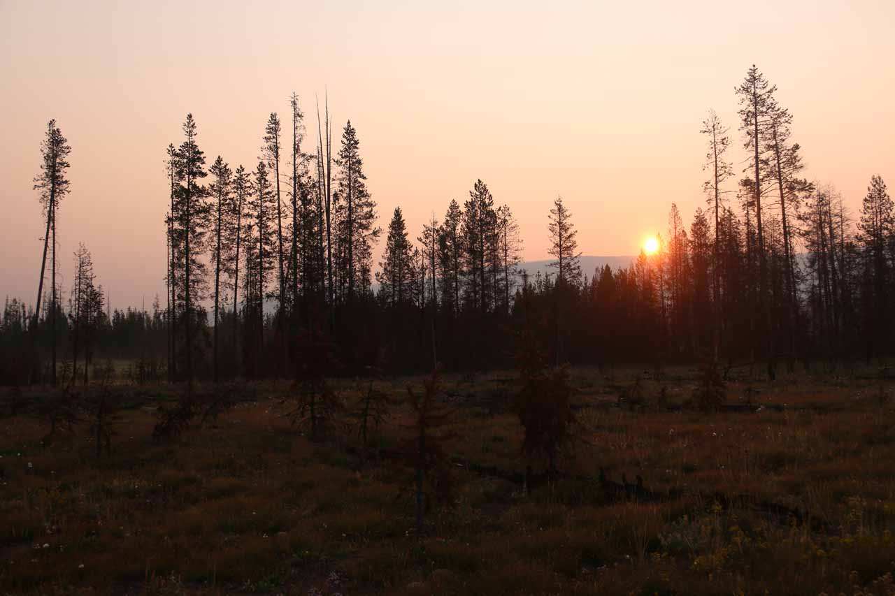 You know you're getting an early start when you see the sun rise.  This was from the Grassy Lake Road as I was driving towards the Union Falls Trailhead