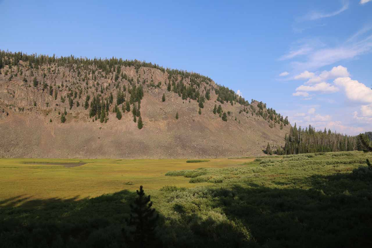 The drive along Grassy Lake Road was through some pretty wild parts of the Targhee National Forest, but there were moments of scenic beauty like this meadow along the way