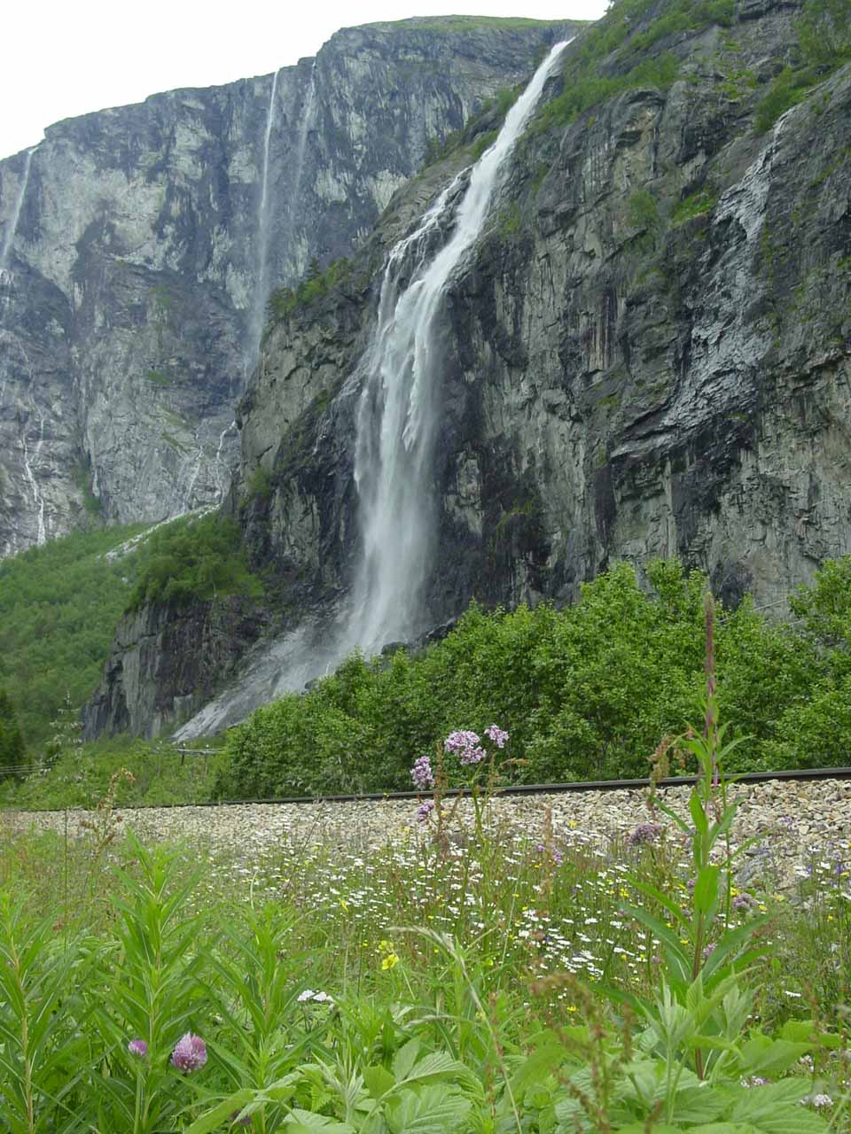 Finally starting to get a clean look at Gravdefossen and the numerous flowers blooming before it