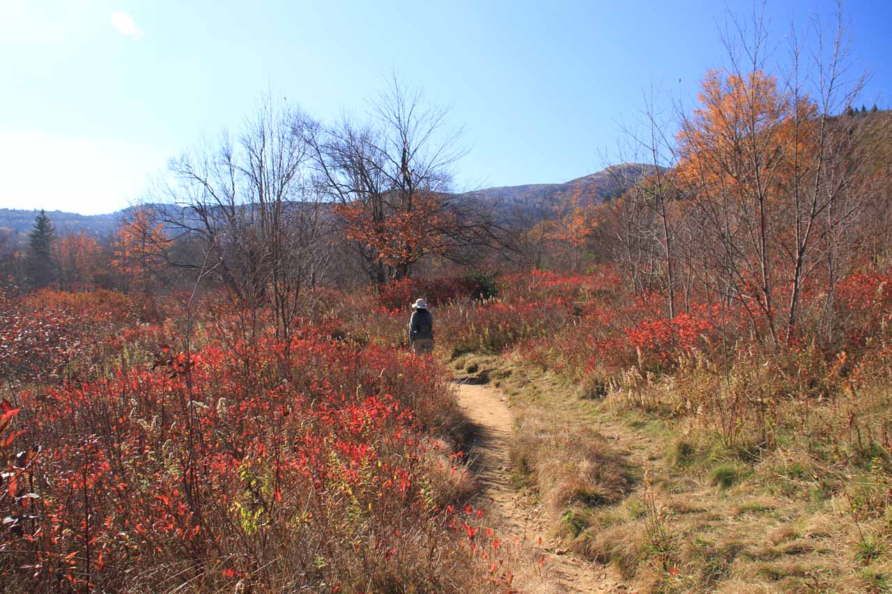 Still hiking amidst the Graveyard Fields