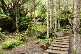 Grawafall_056_07202018 - This was the trail leading up to a higher lookout of the Grawa Waterfall, but it was very slick given the wet conditions so I didn't try it on my visit