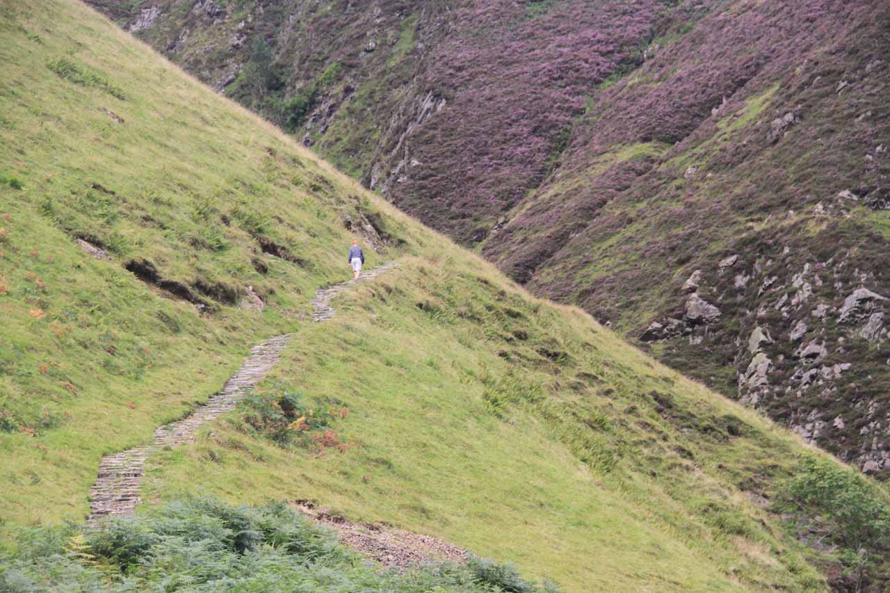 A closer examination of someone on the short but narrow Waterfalls Trail