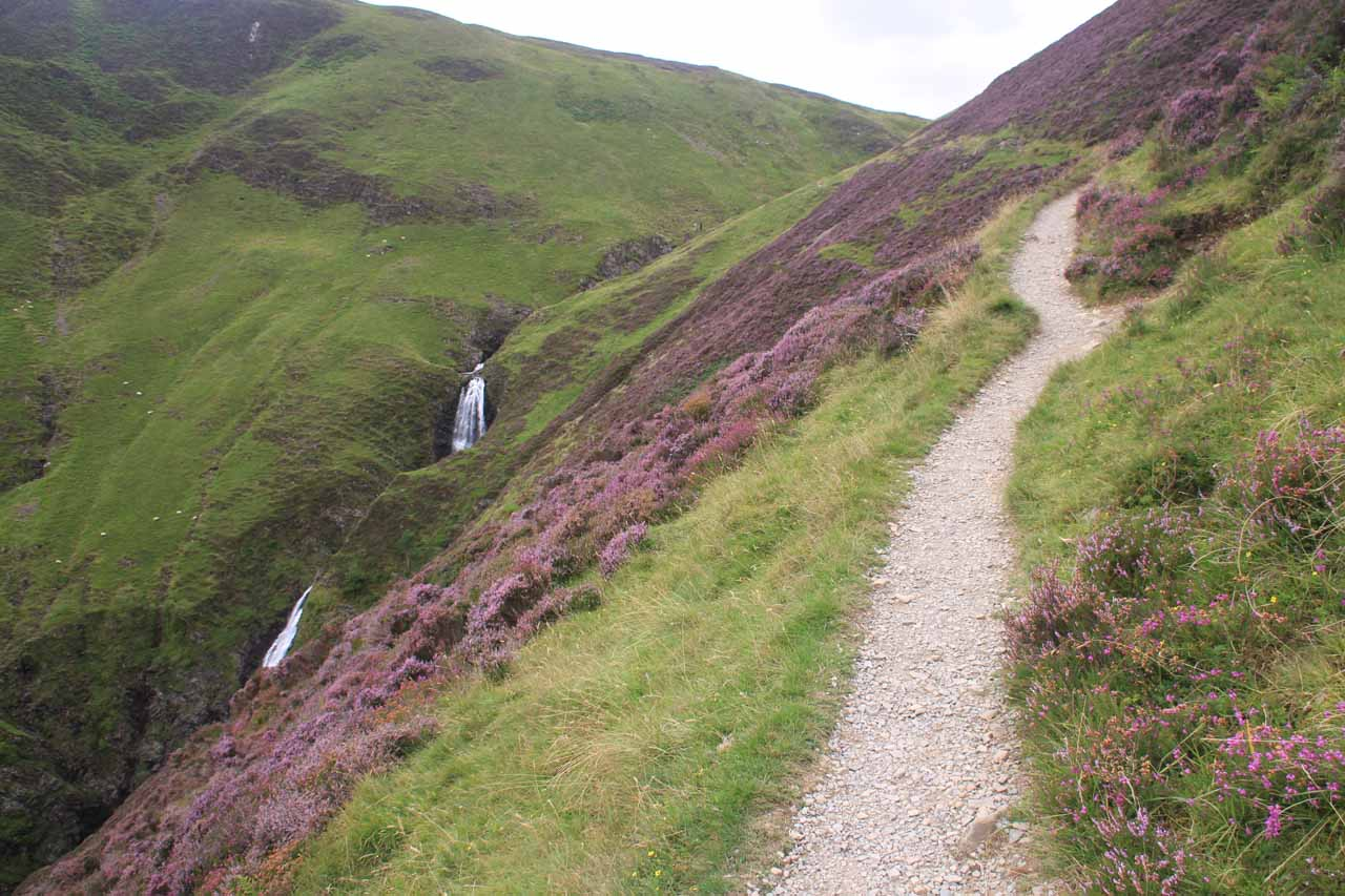 The trail was now high enough to meander amongst the mats of purple heather blooming on the hillsides