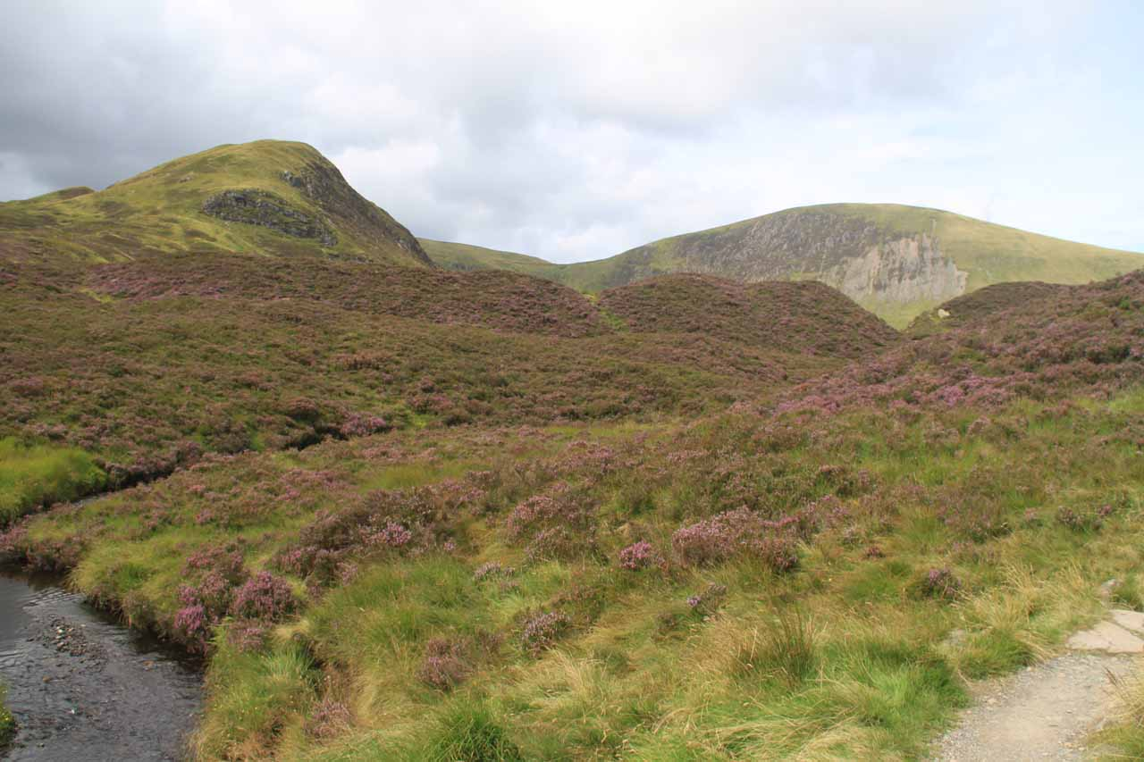 Following along the Roaring Linn in the moors amongst purple heather with some bumpy mountains in the distance