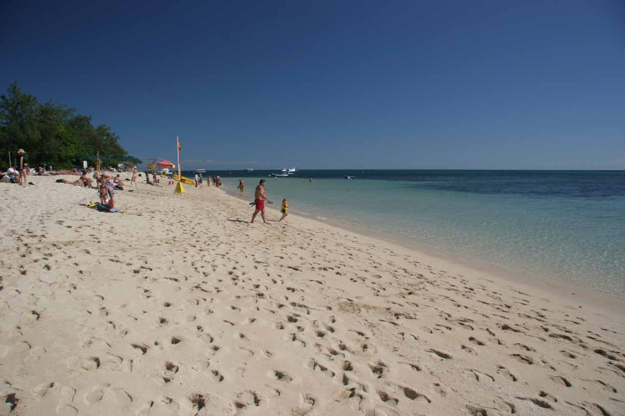 In addition to snorkeling and 'Finding Nemo', our Great Barrier Reef tour also let us enjoy a little white sand beach offshore from Cairns
