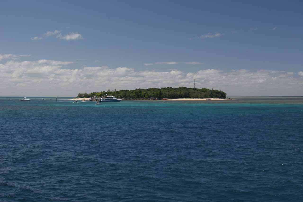 Looking back at Green Island