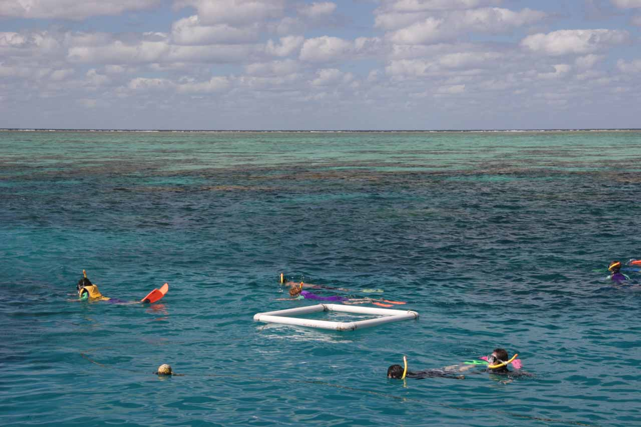 Further to the northeast of the Atherton Tablelands was the town of Cairns, which was the gateway to the Great Barrier Reef. Now we weren't divers, but we found that snorkeling was as good at the GBR