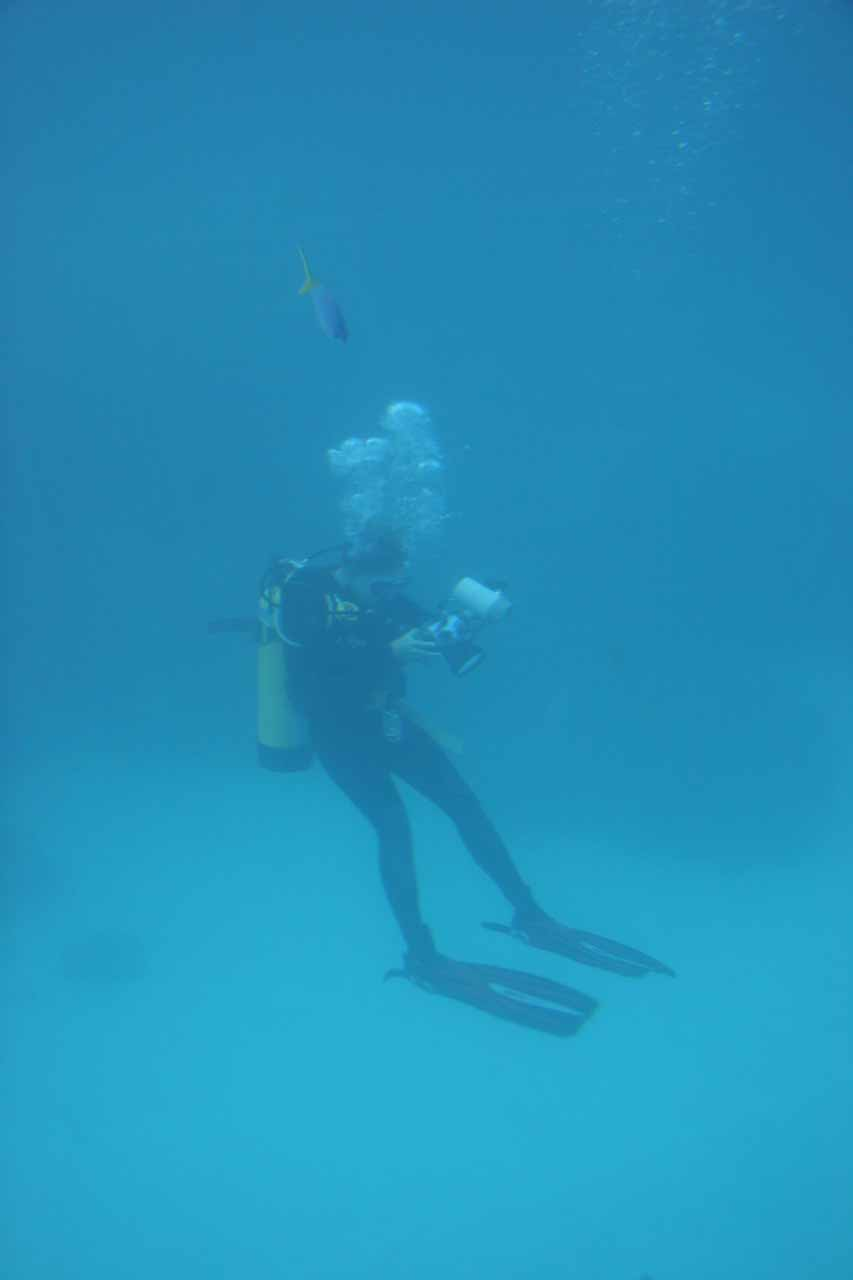 An employee taking underwater pictures