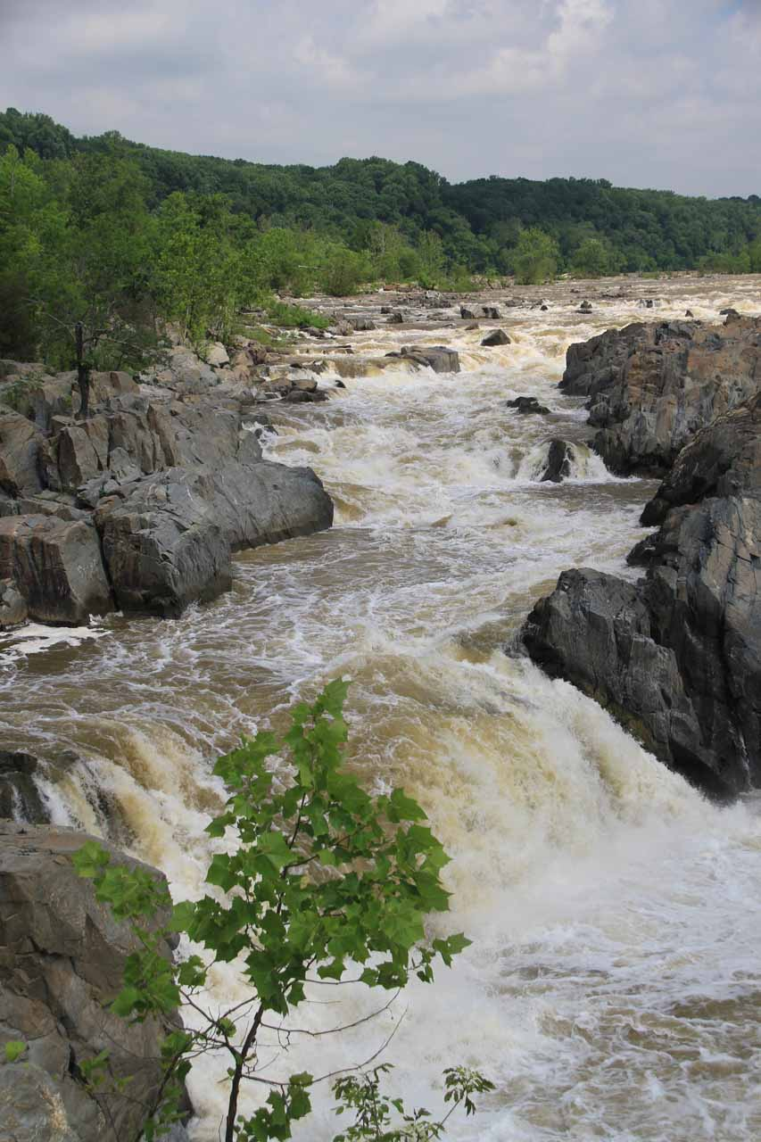 Vertical view towards the far left side of Great Falls