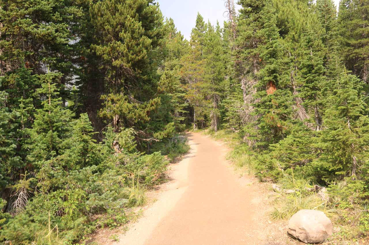 The Swiftcurrent Lake Loop Trail was very well-used and quite maintained