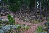 Grizzly_Bear_Falls_011_07302020 - Descending the Blackberry Trail past some picnic tables and what looked like some stock corrals