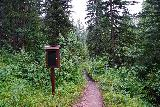 Grizzly_Bear_Falls_042_07302020 - Reaching signs marking the boundary of the Mt Rushmore National Memorial and the start of the Black Elk Wilderness Area. This was about 0.8 miles from the Blackberry Trailhead