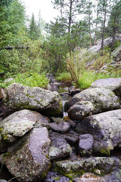 Grizzly_Bear_Falls_069_07302020 - Some boulder scrambling in Grizzly Bear Creek as I looked for any signs of a legitimate cascade or waterfall