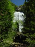 Grizzly_Falls_001_05272005 - Grizzly Falls seen from the parking area through trees during our May 2005 visit