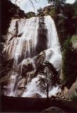 Grizzly_Falls_003_scanned_04272002 - Grizzly Falls in moderate flow in April 2002