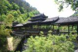 Gudong_001_04192009