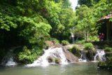 Gudong_042_04192009